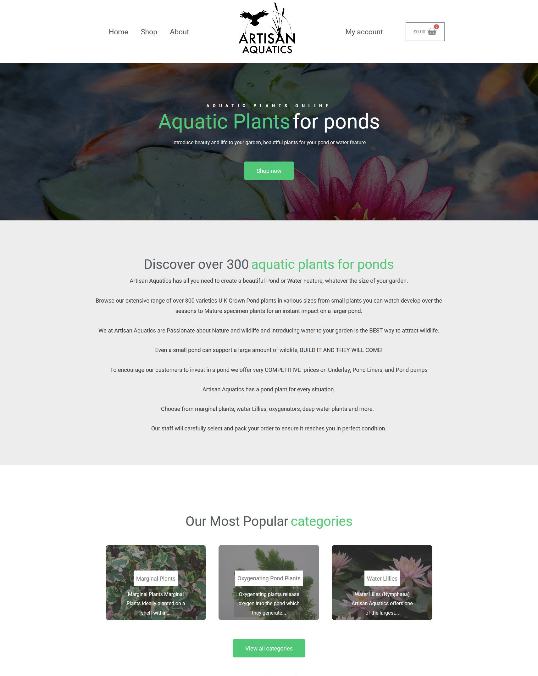 artisan-aquatics